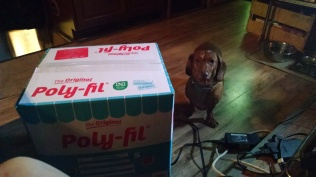 fiberfill with dog
