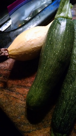 my-first-squashes