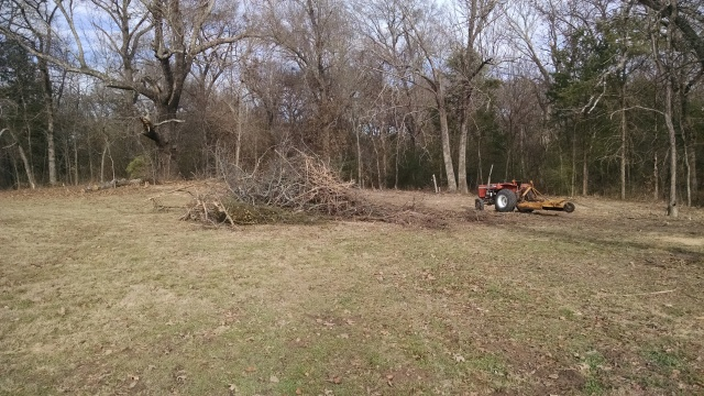 pile-of-brush-we-cleared