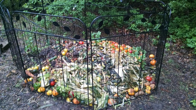 compost heap is growing