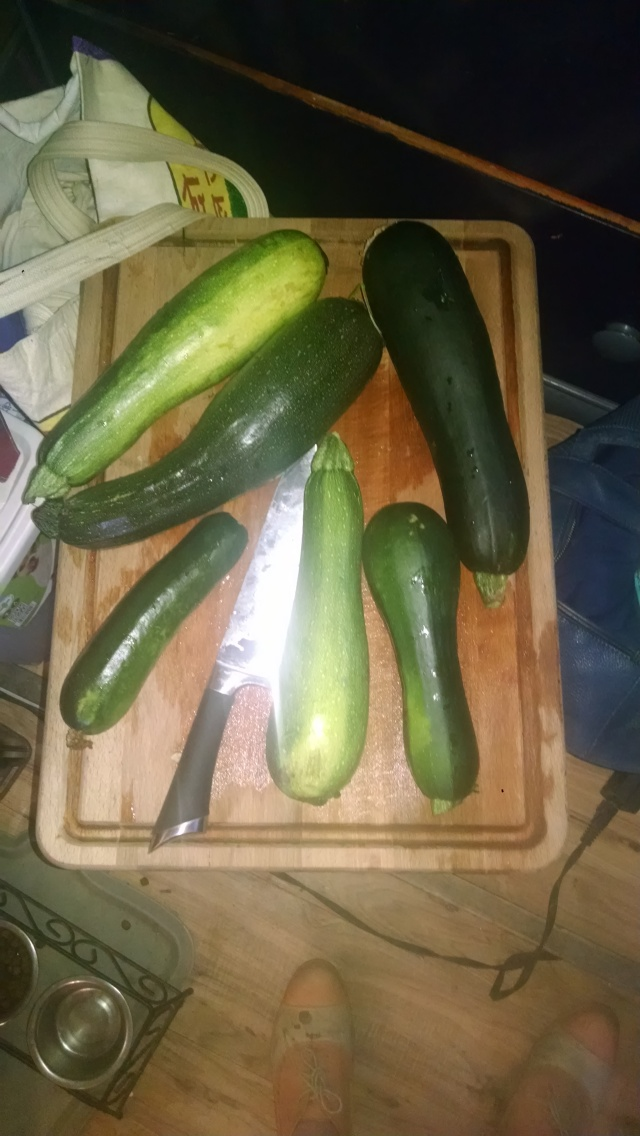 big ass zucchini