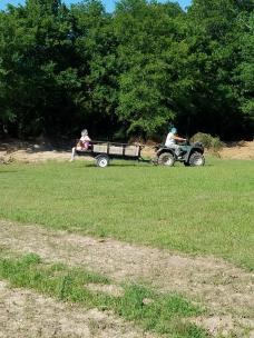 harvesting potatoes may 2017 2