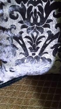burnout velvet pillows